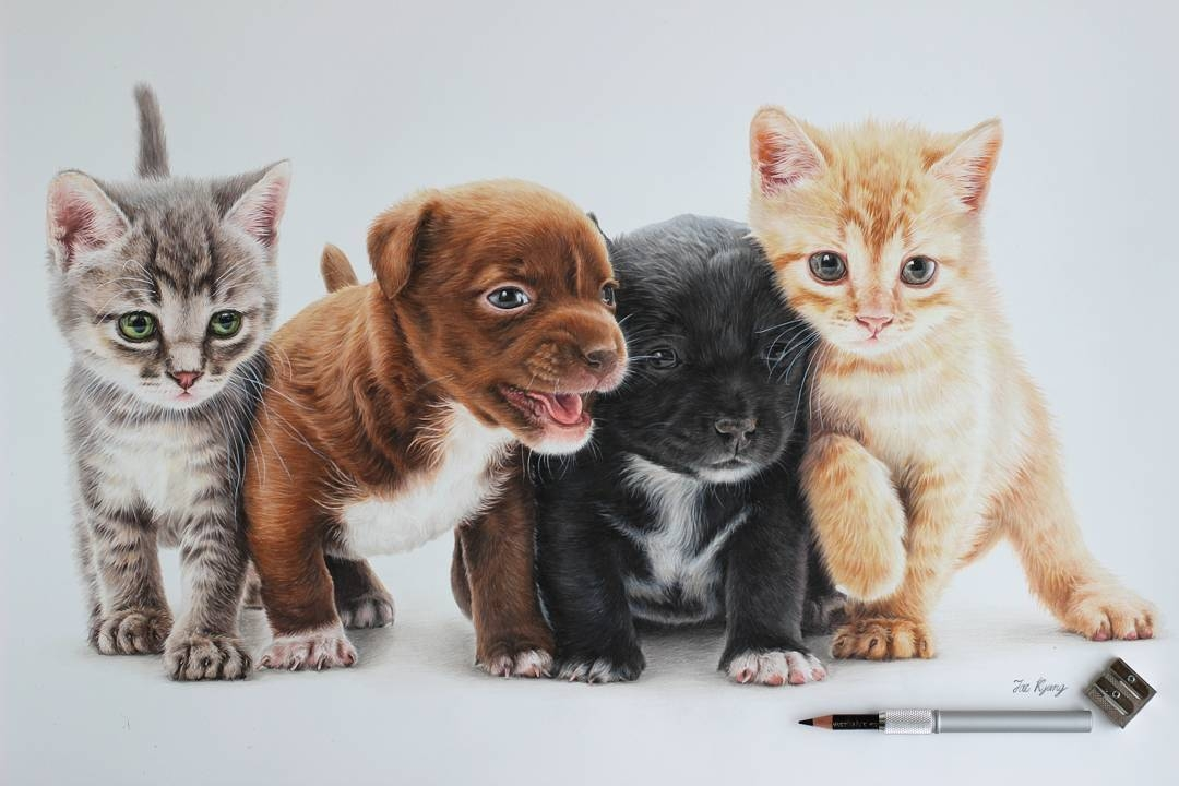 03-Puppies-and-Kittens-Jae-Kyung-Cute-Kittens-and-Puppies-Drawings-www-designstack-co