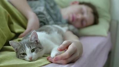 ¿Está bien dejar que tu gato duerma en tu cama?
