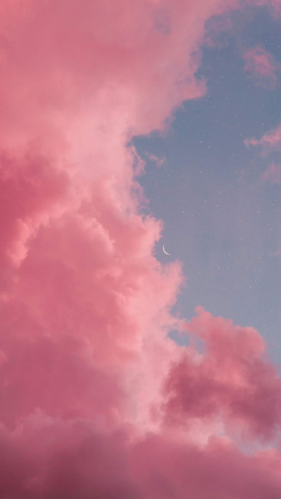 Crescent moon in the pink clouds