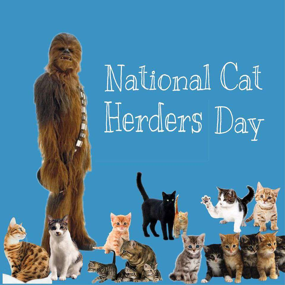 National Cat Herders Day Wishes Unique Image