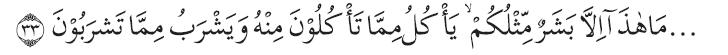 Q.S. al-Mu'minūn/23: 33