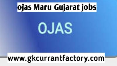 Ojas Maru Gujarat, gujarat govt jobs Ojas Jobs , Ojas Bharti, Ojas Gujarat, Maru Gujarat ojas