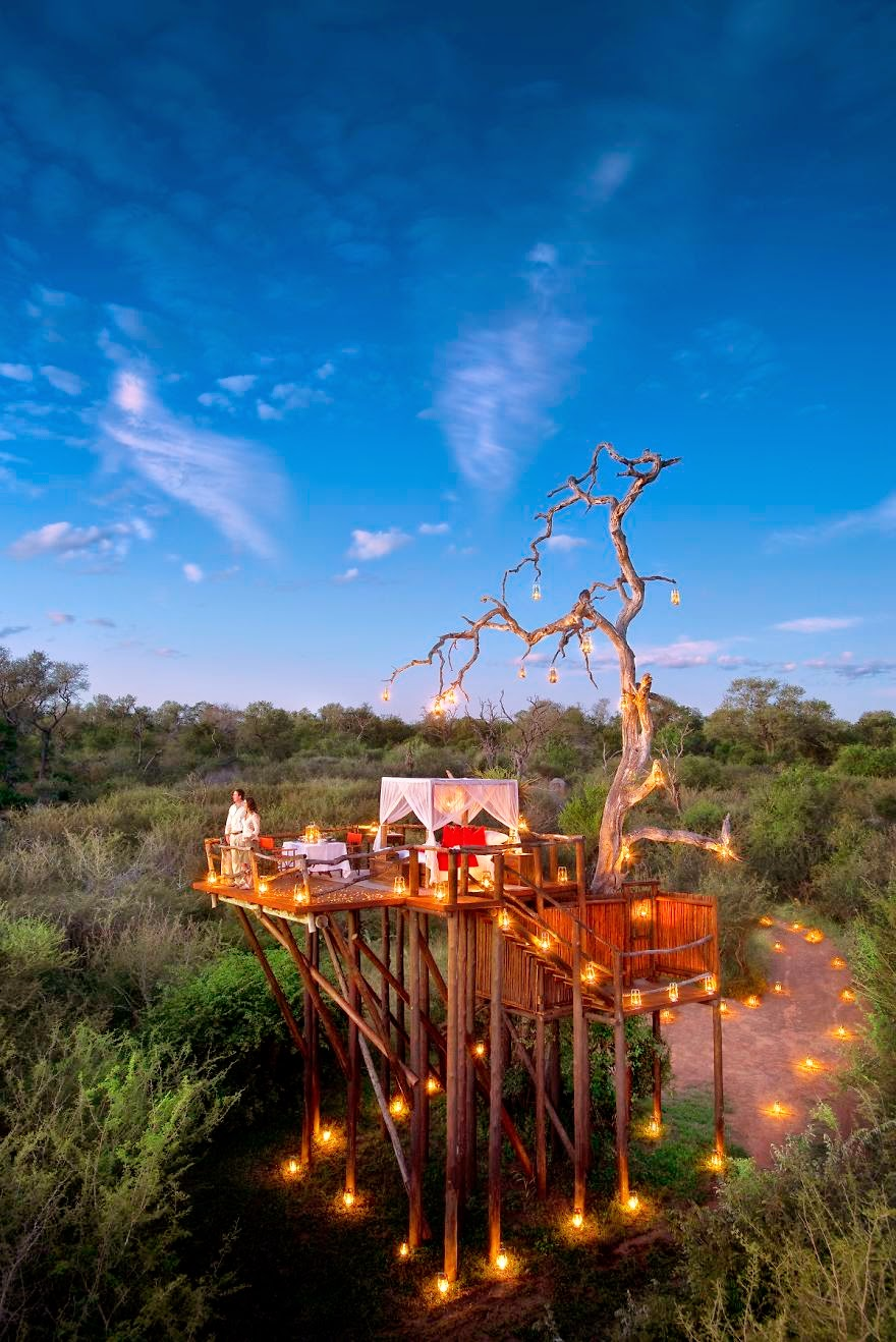 22. Chalkley Treehouse, Lion Sands, South Africa - 26 Of The Coolest Hotels In The Whole Wide World