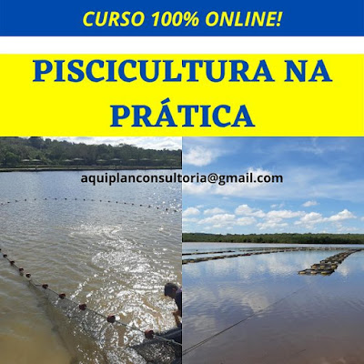 Curso Online Piscicultura na Prática: 100% Online