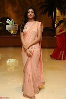 Eesha Rebba in beautiful peach saree at Darshakudu pre release ~  Exclusive Celebrities Galleries 081.JPG