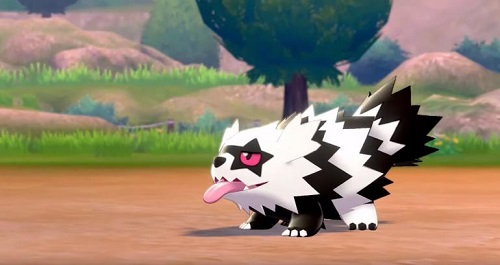 Zigzagoon - Pokemon Sword & Shield