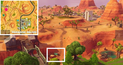 Flaming Hoop Location, Paradise Palms, Fortnite BR, Season 5, Week 4