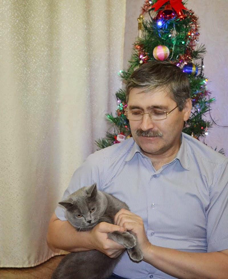 Новый год и кот Гриша
