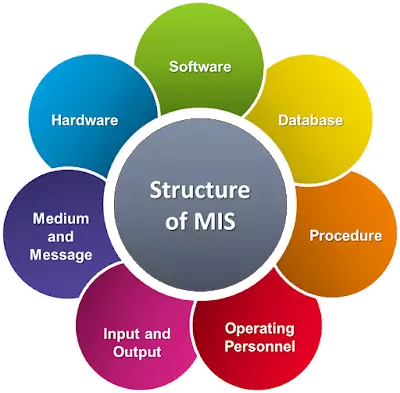Characteristics and Applications of MIS