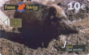 Tarjeta telefónica Jabalí (Sus scrofa)