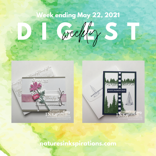 Weekly Digest #17 | Week Ending May 22, 2021