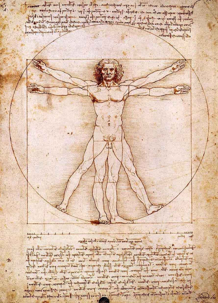Estudante de medicina estudando anatonia