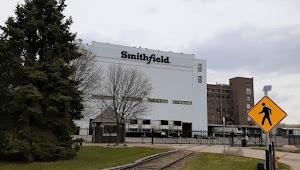 Di Pabrik Babi Milik China Ternyata Klaster Terbesar Penyebaran COVID-19 di Amerika Serikat