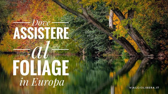 Foliage in Europa