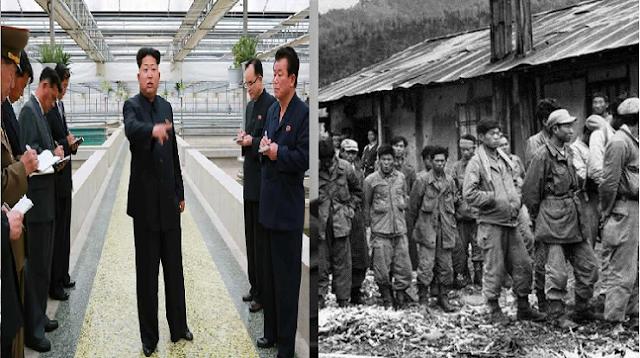 أفعال يمكن أن تعرضك للإعدام في كوريا الشمالية أغلب هذه الافعال معظمنا نمارسها يوميا
