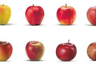 I colori di Apple