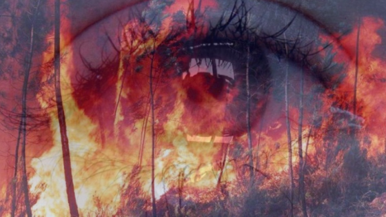 Amazônica em chamas