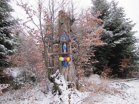 Kapliczka na konarze