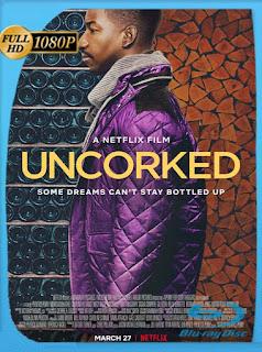 Uncorked (2020) HD [1080p] Latino [GoogleDrive] SilvestreHD