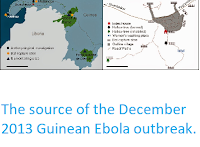 https://sciencythoughts.blogspot.com/2015/01/the-source-of-december-2013-guinean.html