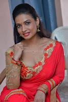 Bhimbika in Red Orange Saree at Sikhandi Movie Launch Spicy Pics 13.jpg