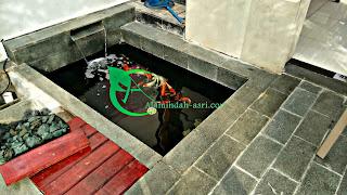 kami adalah jasa pembuatan kolam koi terbaik indonesia, yang memiliki potensi dalam urusan desing dan filterisasi kolam