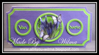 Slimline felicitatie-kaart in de kleuren paars en neongroen met een plaatje van Blauwe druifjes en vlinders. Slimline congratulatory card in purple and neon-green with a picture of Grape hyacinths and butterflies.