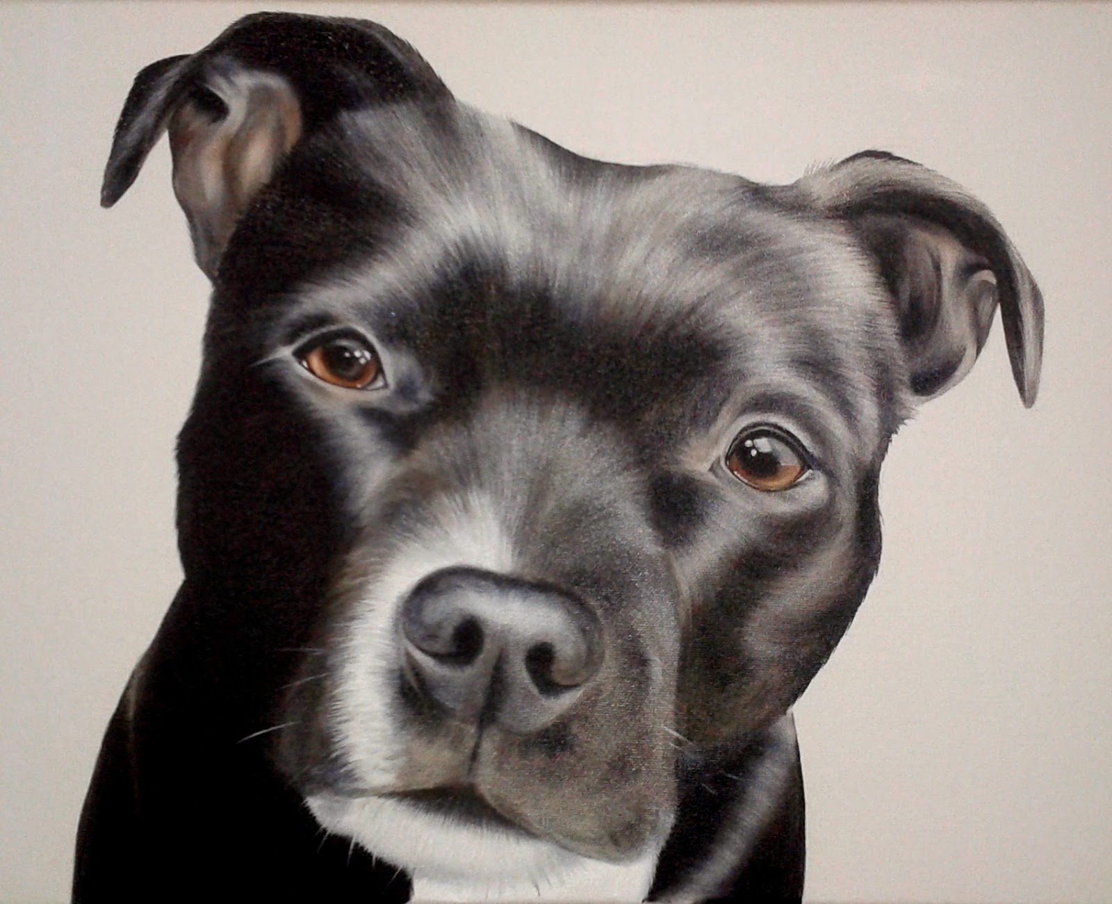 Pet Portrait Staffie Staffordshire Bull Terrier