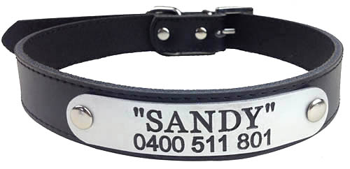 australian-personalised-leather-dog-collars