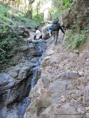 Cerro Viejo - A un costado de las 5 microcascadas