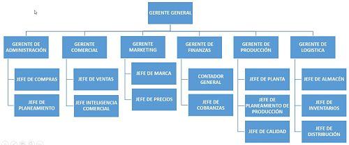 Departamentalizacion por Áreas de Conocimiento