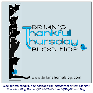 Brian's Thankful Thursday blog hop badge
