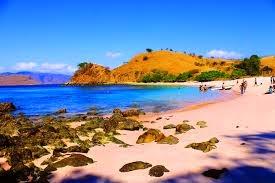 Pantai Pink bagian Belakang
