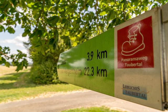 Panoramaweg Taubertal Etappe 3 Tauberbischofsheim - Bad Mergentheim 06