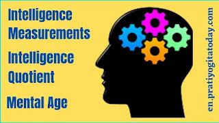Intelligence Measurements, Intelligence Quotient, Mental Age