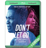 DON'T LET GO (2019) WEB-DL 1080P HD MKV ESPAÑOL LATINO
