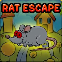 Red Eyed Rat Escape