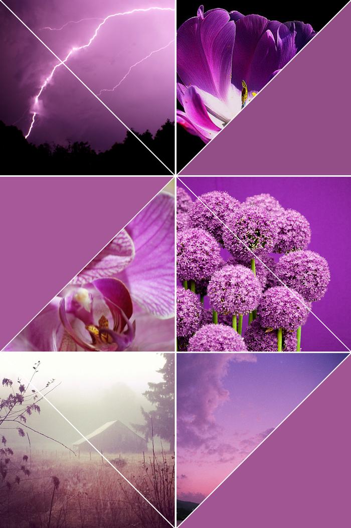 color inspiration, photography, pantone, violet, violeta, morado, púrpura, flowers, landscape, sky
