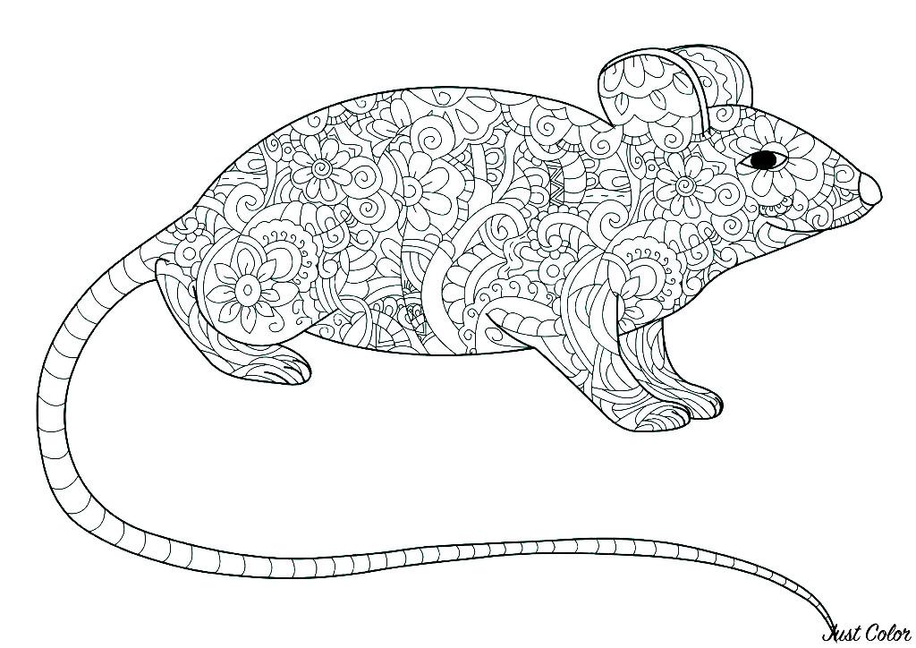 Tranh tô màu con chuột trang trí họa tiết