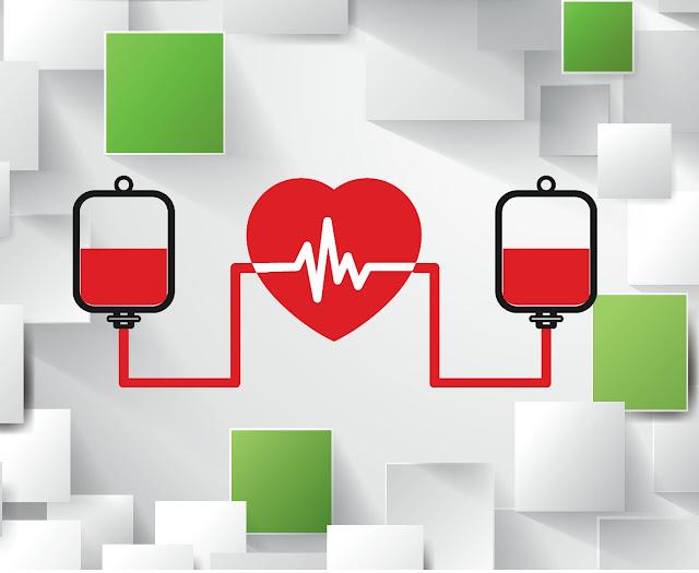 Mengenal sistem peredaran darah dalam tubuh manusia