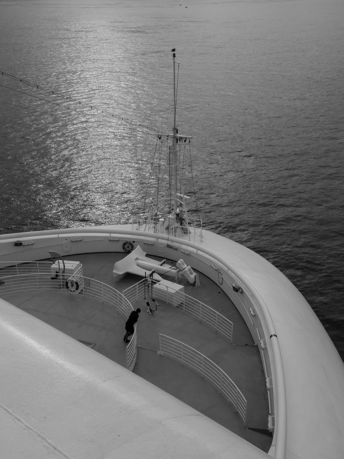A black and white view from the Sapphire Princess cruise ship.