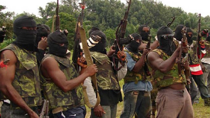 Niger Delta militants warn Northern youths, tell Buhari where to locate settlement for herdsmen