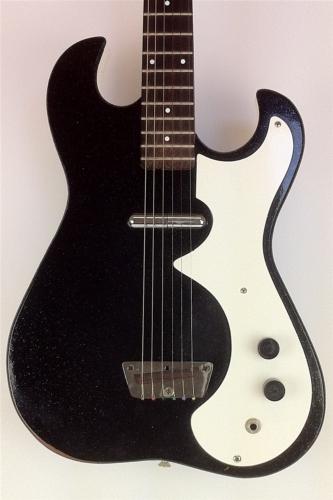 Guitar Leaks: Silvertone 1448, Amp In Case