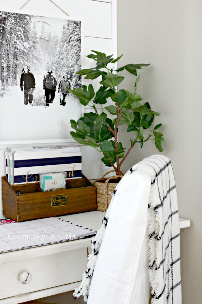 Faux fiddle plant from Ikea - www.goldenboysandme.com