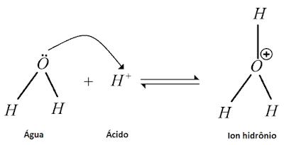 Reaçao protonaçao  agua ion hidronio