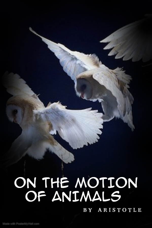 On the Motion of Animals