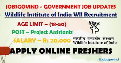 WII Recruitment 2021