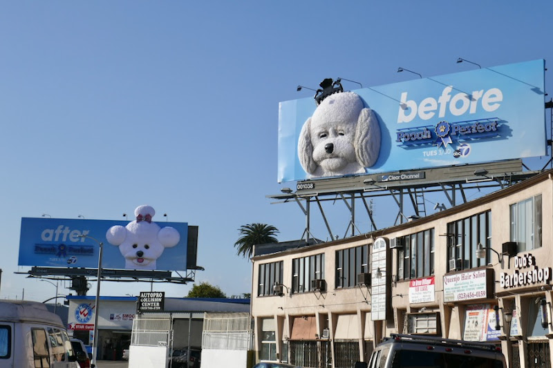 Pooch Perfect 3D Before After billboards