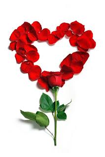 Rosa Vermelha Em Forma de Coração