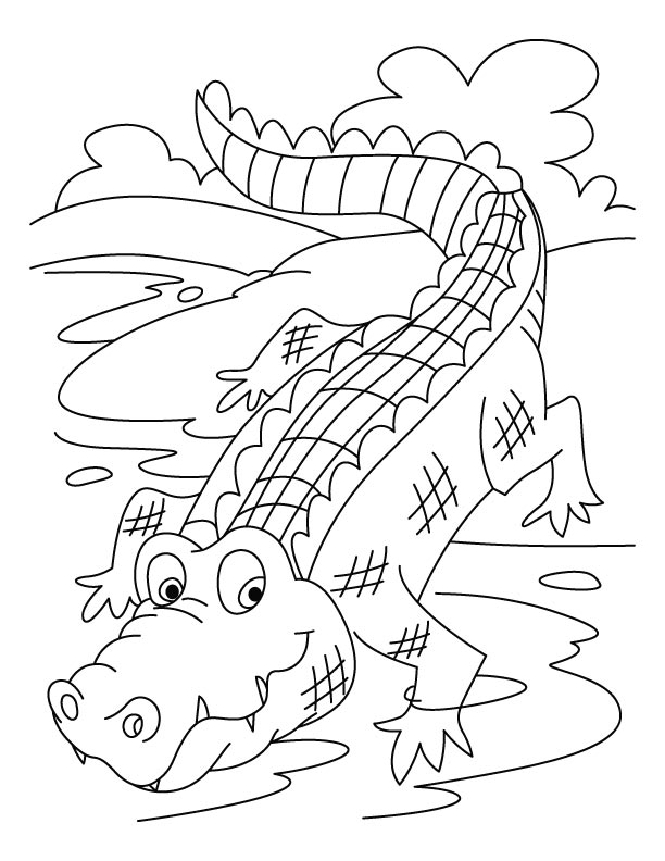 coloring pages of crocodiles | Coloring Page Of Animals For Kids: Crocodiles Coloring ...